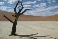 dode vlei namibie#02