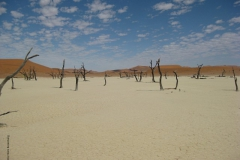 dode vlei namibie#01