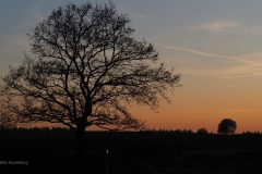 sunset ginkelse heide#07