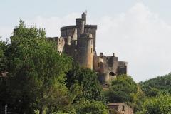 kasteel koninkrijk parkinson