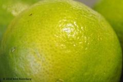 vrucht#08