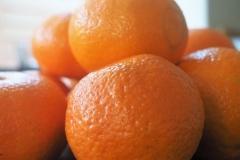 vrucht#12