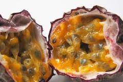 vrucht#14