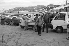 vissers, mykonos