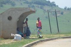 bushalte swaziland
