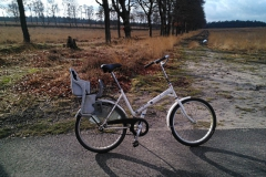 fiets#05 (20130203) transport