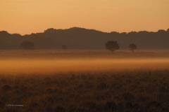 sunrise planken wambuis#(20190602)a landschappen