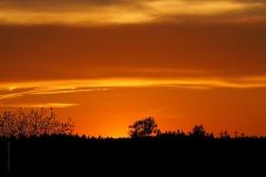 sunset ginkelse hei#(20190513) landschappen