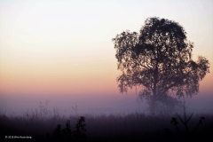 sunrise ginkelse hei#(20181011) landschappen