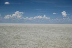 etosha#(20121205) landschappen