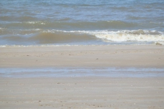 zand#(20150703)b landschappen