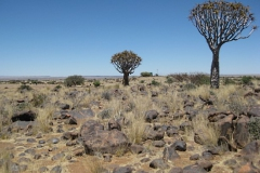 keetmanshoop#01 (20121126) landschappen
