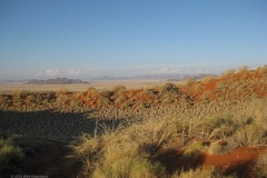 namib-naukluft national park#(20121130)f landschappen