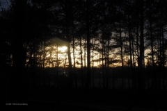 sunset sysselt#(20210109) landschappen