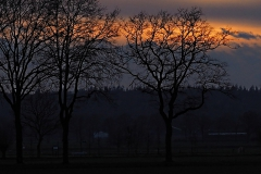 sunset kraats#(20210126)b landschappen