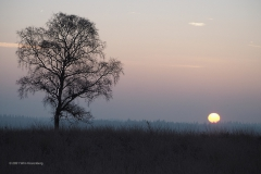 sunrise ginkelse heide#(20210131)a landschappen