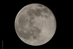 maan#(20210227) landschappen