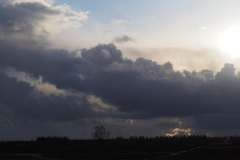 ginkelse heide#(20200303) landschappen