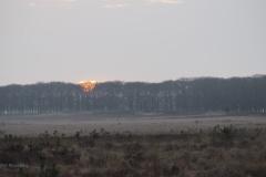 sunrise planken wambuis#(20180408)a landschappen