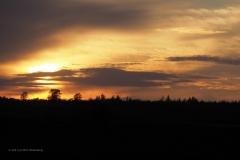 sunset ginkelse hei#(20210426)a landschappen