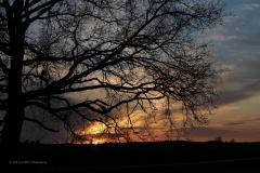 sunset ginkelse hei#(20210426)b landschappen