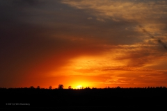sunset ginkelse hei#(20210426)c landschap