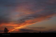 sunset ginkelse hei#(20210426)d landschap