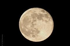 maan#(20210427)a landschappen