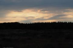 sunset ginkelse heide#(20210803) landschappen