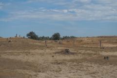 zand#(20210815)b landschappen