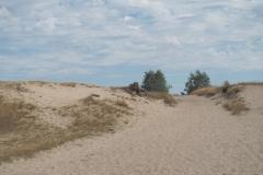 zand#(20210815)c landschappen