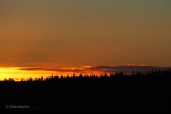 sunset ginkelse hei#(20181224)c landschappen