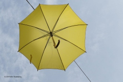 paraplu#(20190906) diversen