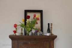 tulpen#(20210223) flora