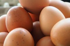 eieren#(20180330) food