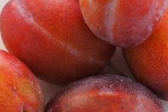 vrucht#13 (20180825) food