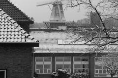 molen#(20101218)a gebouwen