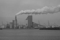haven rotterdam#01