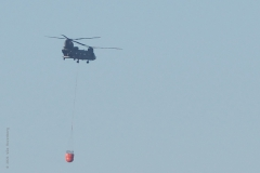 helicopter#(20210302)a transport
